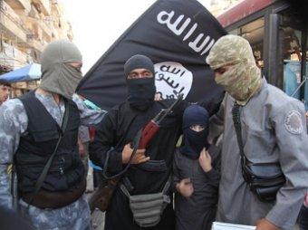 СМИ: ИГИЛ начал формировать свою государственность