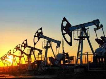 Глава думского комитета Пушков: США стояли за падением цен на нефть, чтобы ударить по России