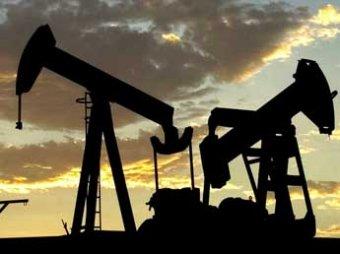 Нефть продолжает падать: за 2014 год она подешевела вдвое