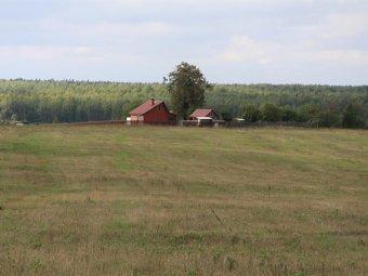 Россиянам бесплатно выдадут по 1 гектару земли