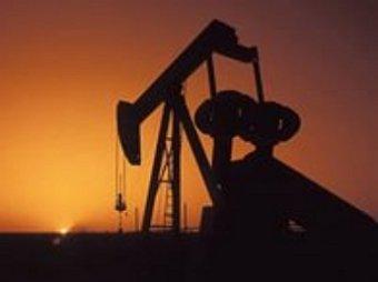 Цена на нефть поднялась выше 50 долларов за баррель