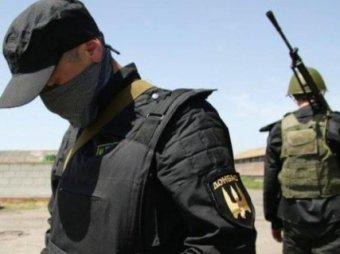 Новости Новороссии и Украины 30 января 2015: Украина расформировывает добровольческие батальоны (ВИДЕО)