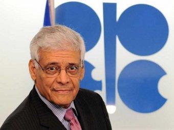 Генсек ОПЕК: цена на нефть «дойдет до » за баррель