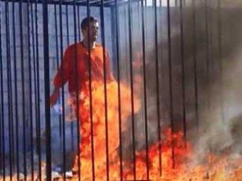 В ООН представлен шокирующий доклад о зверствах ИГИЛ в Ираке