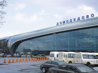 В аэропорту Домодедово известный иркутский адвокат забыла гроб с телом сына