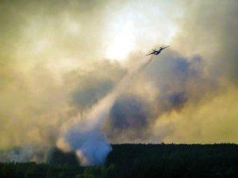 СМИ: Пожар в районе ЧАЭС потушен