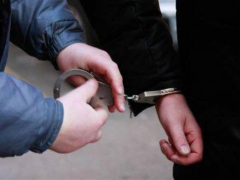 В Санкт-Петербурге задержан подозреваемый в похищении школьника