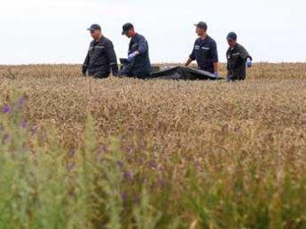 В ДНР сообщили об обнаружении на месте падения Boeing около 2,5 тыс. фрагментов тел