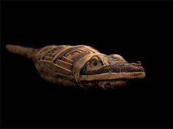 Ученые выяснили, что треть египетских мумий пустые внутри