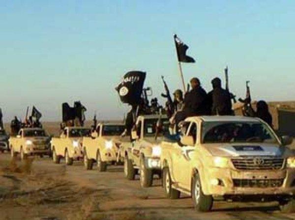 """Спецслужбы США расшифровали 7 терабайт данных о структуре """"Исламского государства"""""""