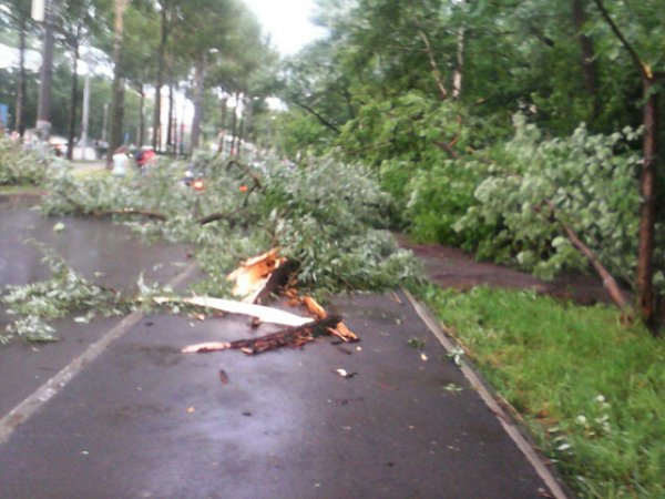 Ураган в Перми 24 июня 2015 валил деревья и срывал крыши (ФОТО, ВИДЕО)