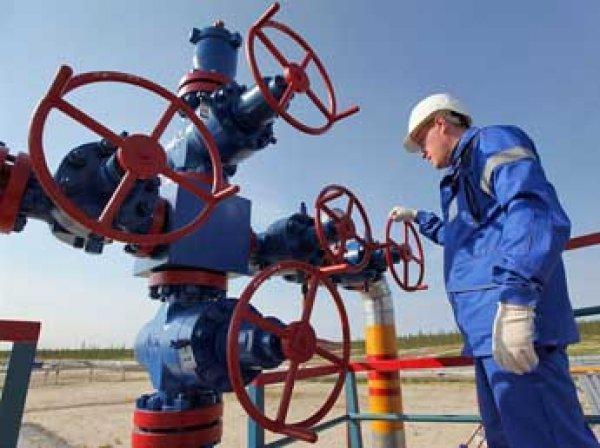 Путин лишил Украину скидки на газ из-за низких цен на нефть