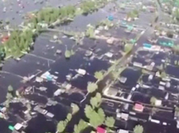 Из-за мощного наводнения в Югре по улицам ползают змеи
