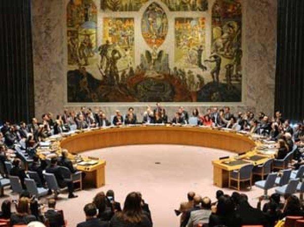 """В Совбез ООН внесли резолюцию о международном трибунале по сбитому на Донбассе """"Боингу"""""""