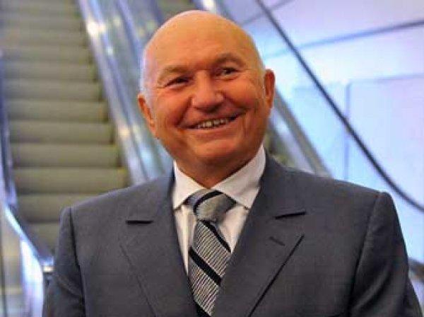 Лужков предложил добывать из санкционных продуктов электричество
