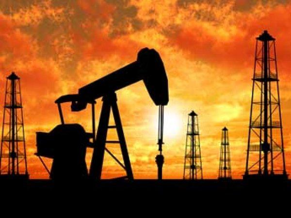 Сечин рассказал Путину, что Россию ждет дефицит бензина в 2017 году