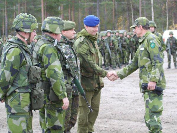 Финляндия и Швеция заявили о возможности создания альтернативы НАТО