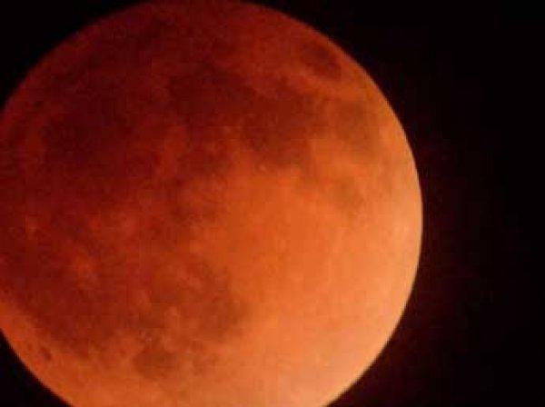 """Астрономы рассказали, откуда лучше всего на Земле можно будет наблюдать """"кровавую Луну"""""""
