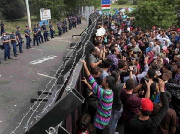 20 полицейских пострадали во время столкновений на границе Венгрии и Сербии