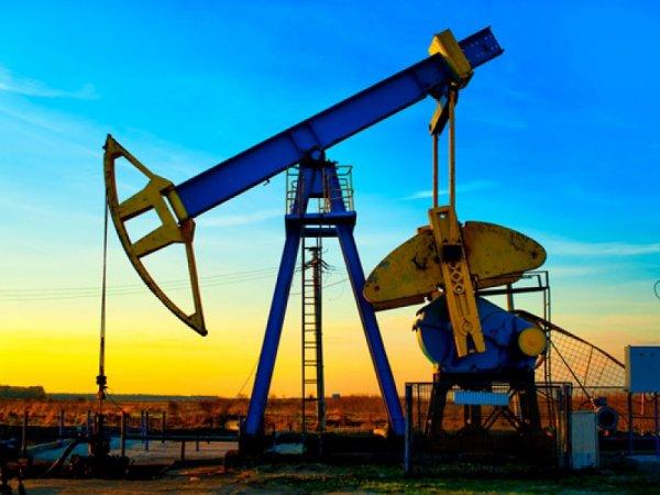 Курс доллара на сегодня 1 октября 2015: решение РФ о ВС в Сирии почти не повлияет на рынок нефти - аналитики