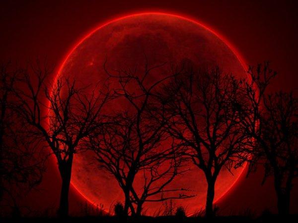 """""""Кровавая Луна"""" 28 сентября 2015: где можно наблюдать? (фото)"""