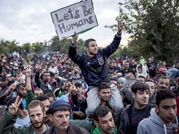 Евросоюз выделит €1 млрд помощи сирийским беженцам
