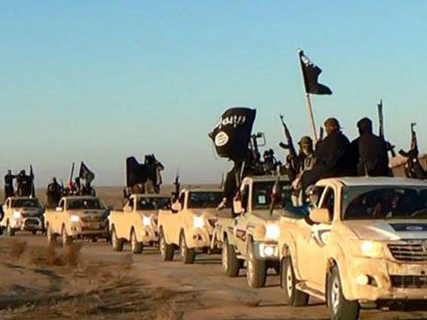 В МИД РФ рассказали, откуда у боевиков ИГИЛ пикапы Toyota