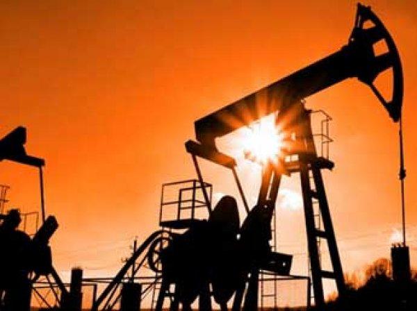 Саудовская Аравия накопила рекордное количество нефти за 13 лет