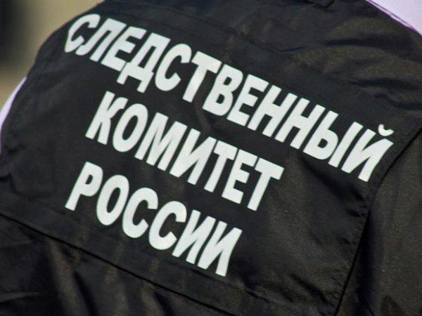 СКР проверит на экстремизм статью блогера Антона Носика