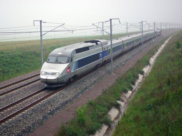 В Европе скоростные поезда встали из-за диверсии