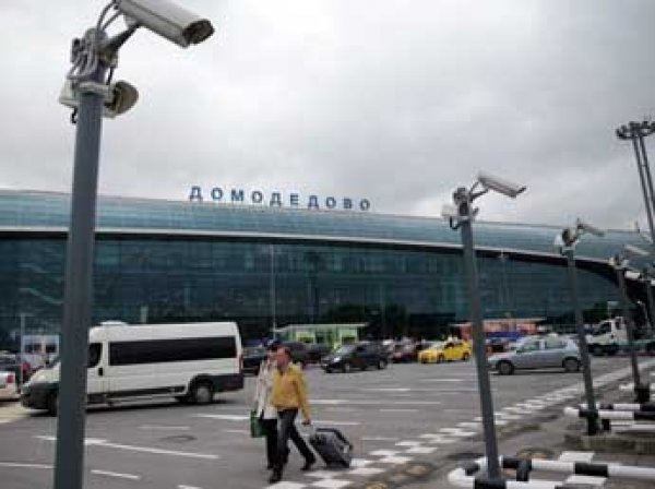 СМИ узнали, почему закрыли дело о теракте в Домодедово