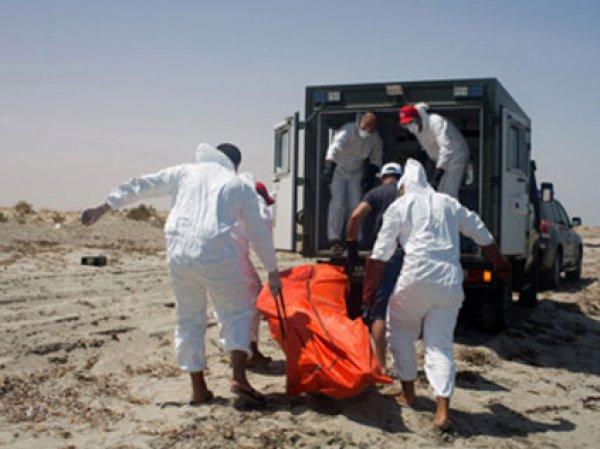 Причины куршения самолета в Египте назвали в ФСБ: это был теракт (видео)