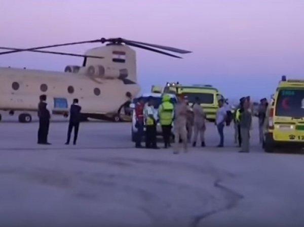 """Дарина Громова, """"главный пассажир"""": найдено тело 10-месячной жертвы лайнера А321 (фото)"""