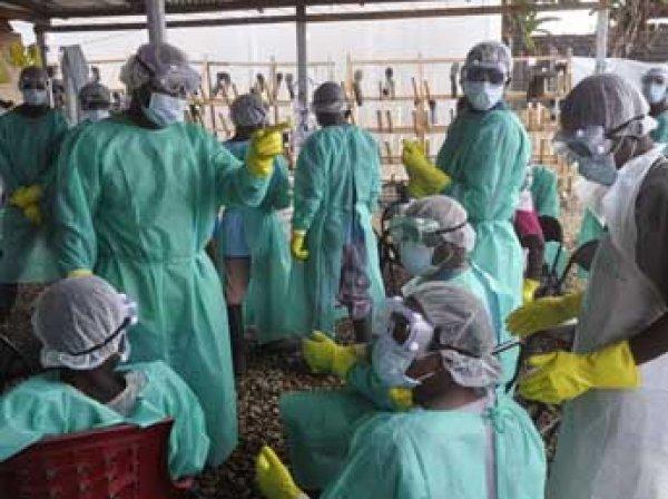 В Гвинее вылечили последнего пациента с лихорадкой Эбола