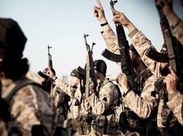 СМИ: для боевиков ИГИЛ закупали китайские ПЗРК на Украине