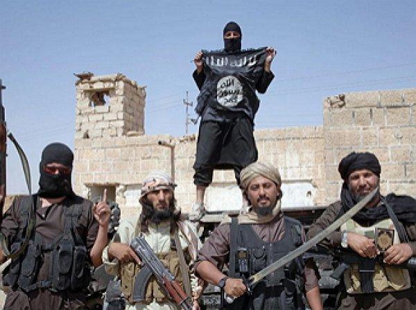 Боевики ИГИЛ: Обама мы объявляем тебя нашим халифом