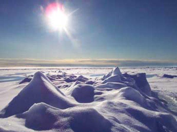 Ученые: в Арктике температура поднялась до рекордной отметки за 115 лет