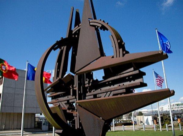 СМИ: Польша обратится в НАТО с просьбой по размещению ядерного оружия