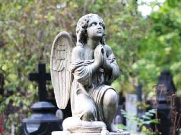На кладбищах Москвы запустят бесплатный Wi-Fi