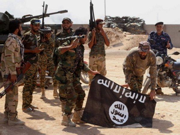 Боевик ИГИЛ: Турция способствовала вербовке новых членов группировки