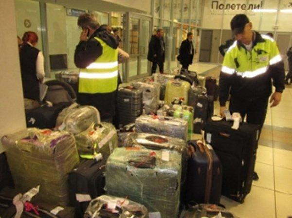 МЧС завершило перевозку багажа российских туристов из Египта
