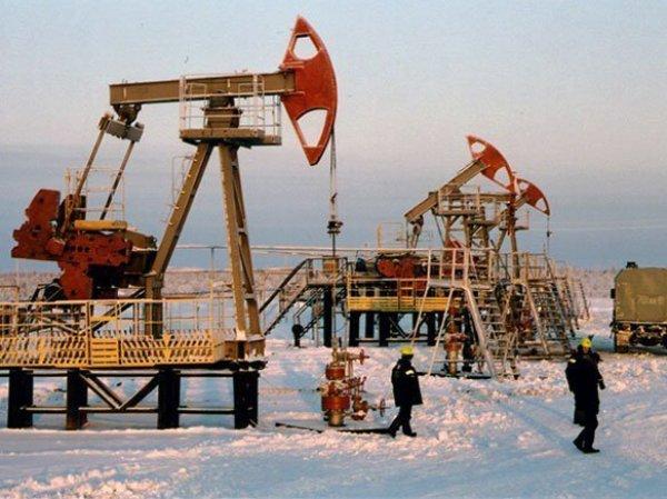 Курс доллара на сегодня, 29 января 2016: цена на нефть превысила 36 долларов за баррель