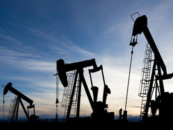 Курс доллара на сегодня, 8 января 2016: обвал китайского рынка потянул нефть к  за баррель
