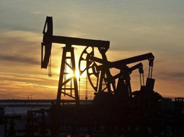 Цена нефть марки Brent рухнула ниже  за баррель