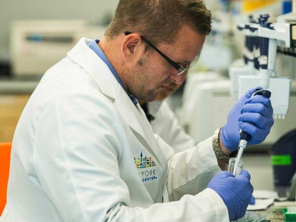 В США зафиксирован первый случай заражения вирусом Зика