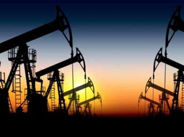 Из-за падения цен на нефть в США может обанкротиться треть нефтяных компаний
