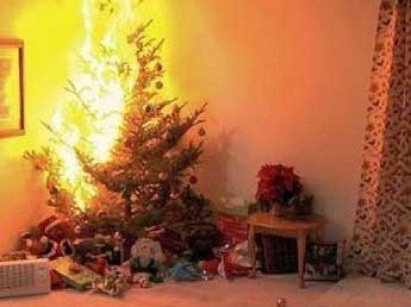 В Красноярском крае две девочки погибли в новогоднюю ночь из-за загоревшейся елки