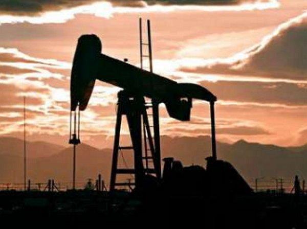 Цена нефти марки Brent поднялась выше  за баррель