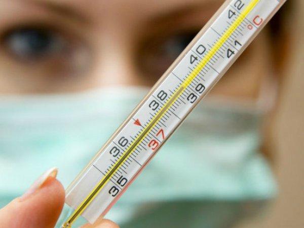 Свиной грипп, симптомы: что нужно знать о болезни, рассказал известный вирусолог