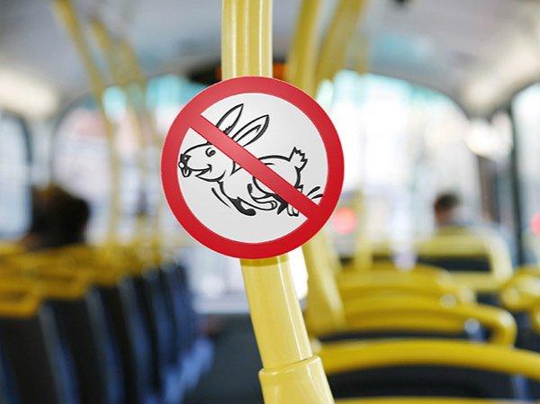 СМИ: Минтранс введет единые штрафы за безбилетный проезд